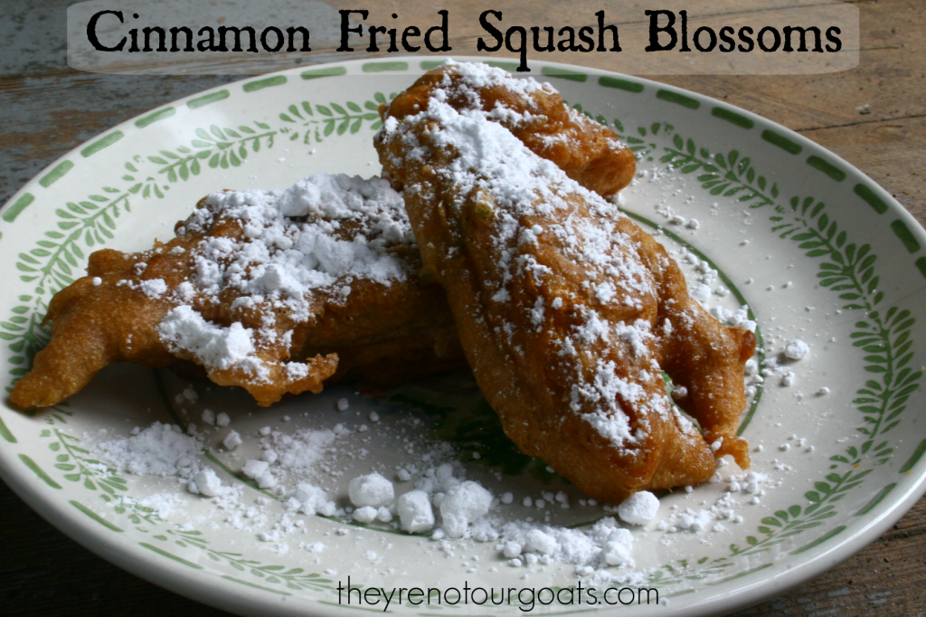 cinnamon fried squash blossoms