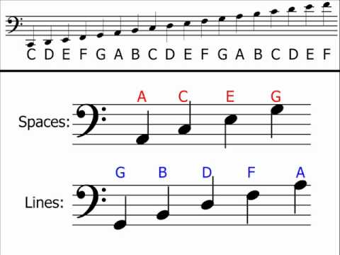 bass clef linesspaces