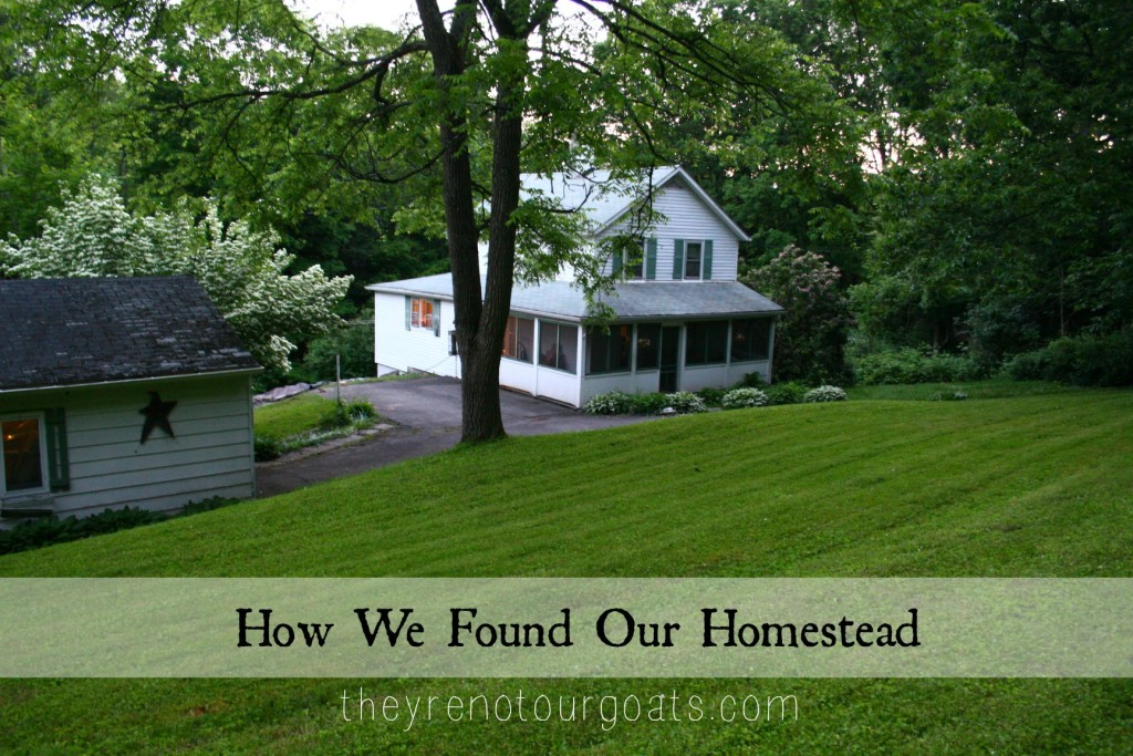 How We Found Our Homestead