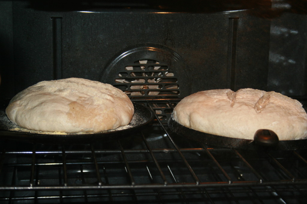 March 2015- Sourdough 045