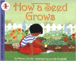 howaseedgrows