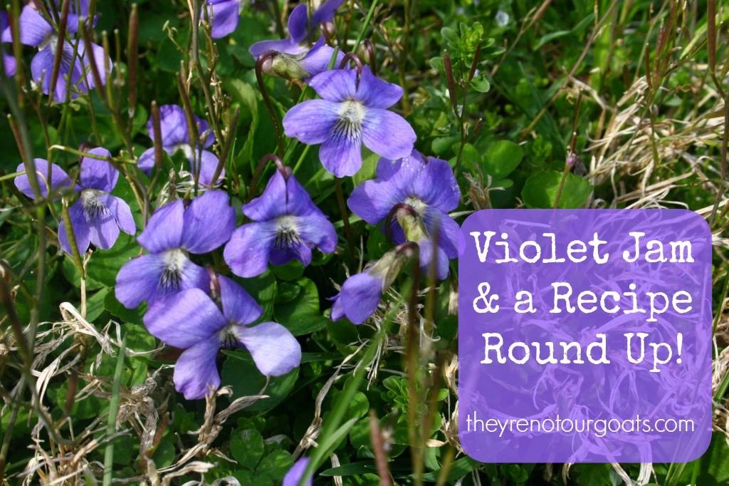 Violet Jam & a Recipe Round-Up!