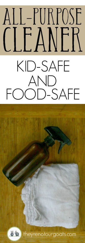 How to make a SAFE and easy cleaner for many surfaces!