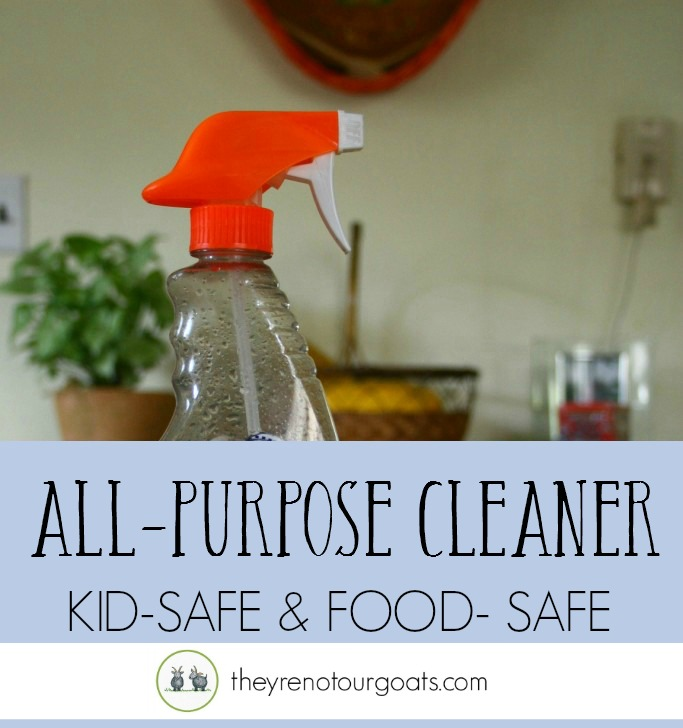 How to make a safe and easy cleaner for all your surfaces!