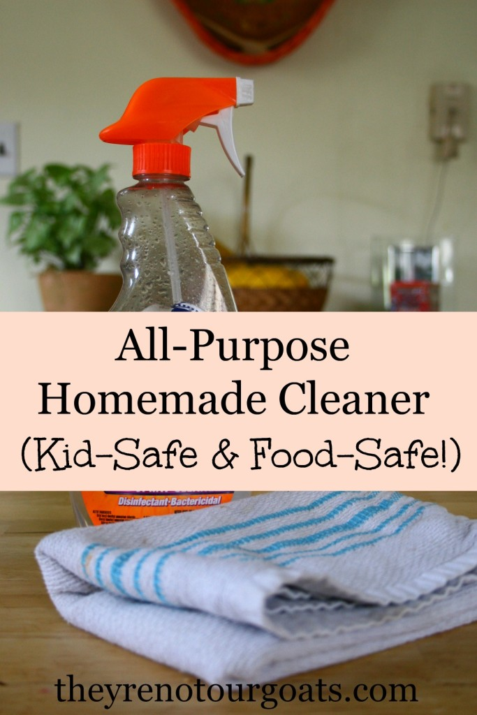 All purpose homemade cleaner that's kid safe and food safe!