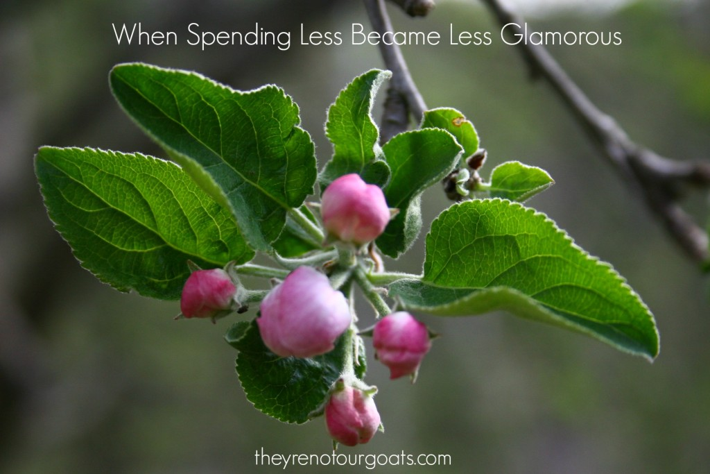 When Spending Less Became Less Glamorous
