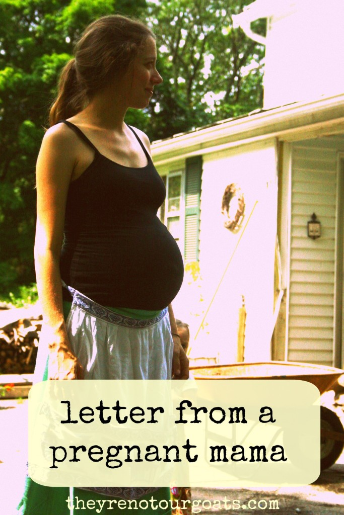 Letter from a pregnant mama