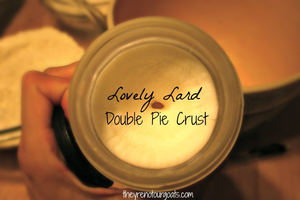 Lovely Lard Double Pie Crust