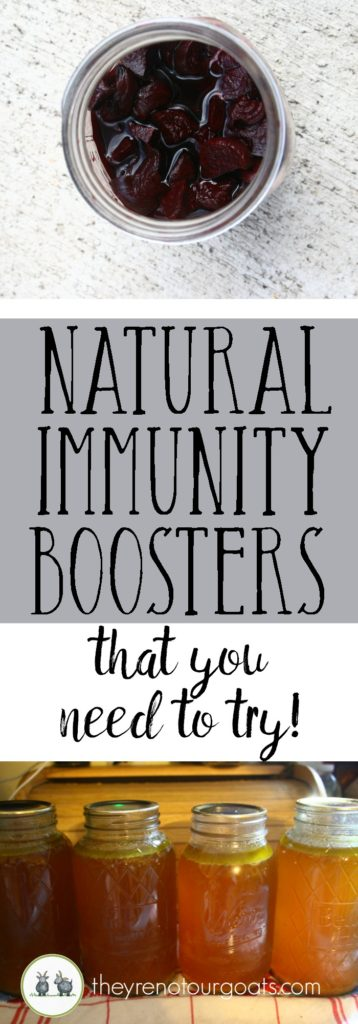 Simple, natural immunity boosters that you simply must try!