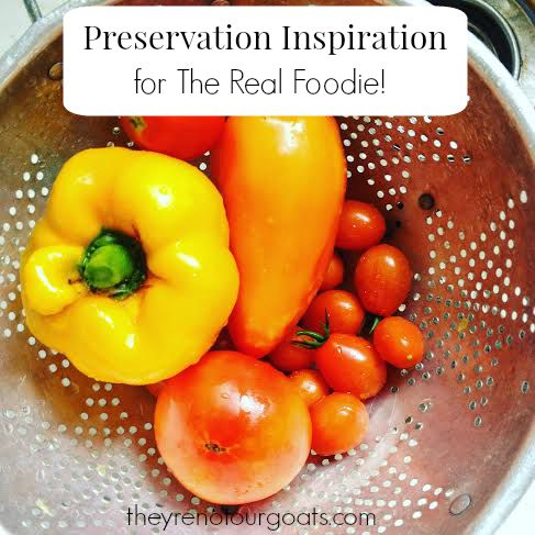 Preservation Inspiration for The Real Foodie