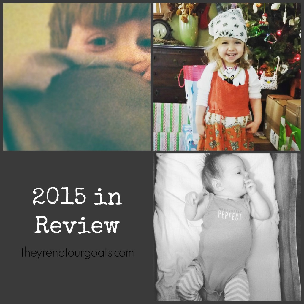 2015inreview2