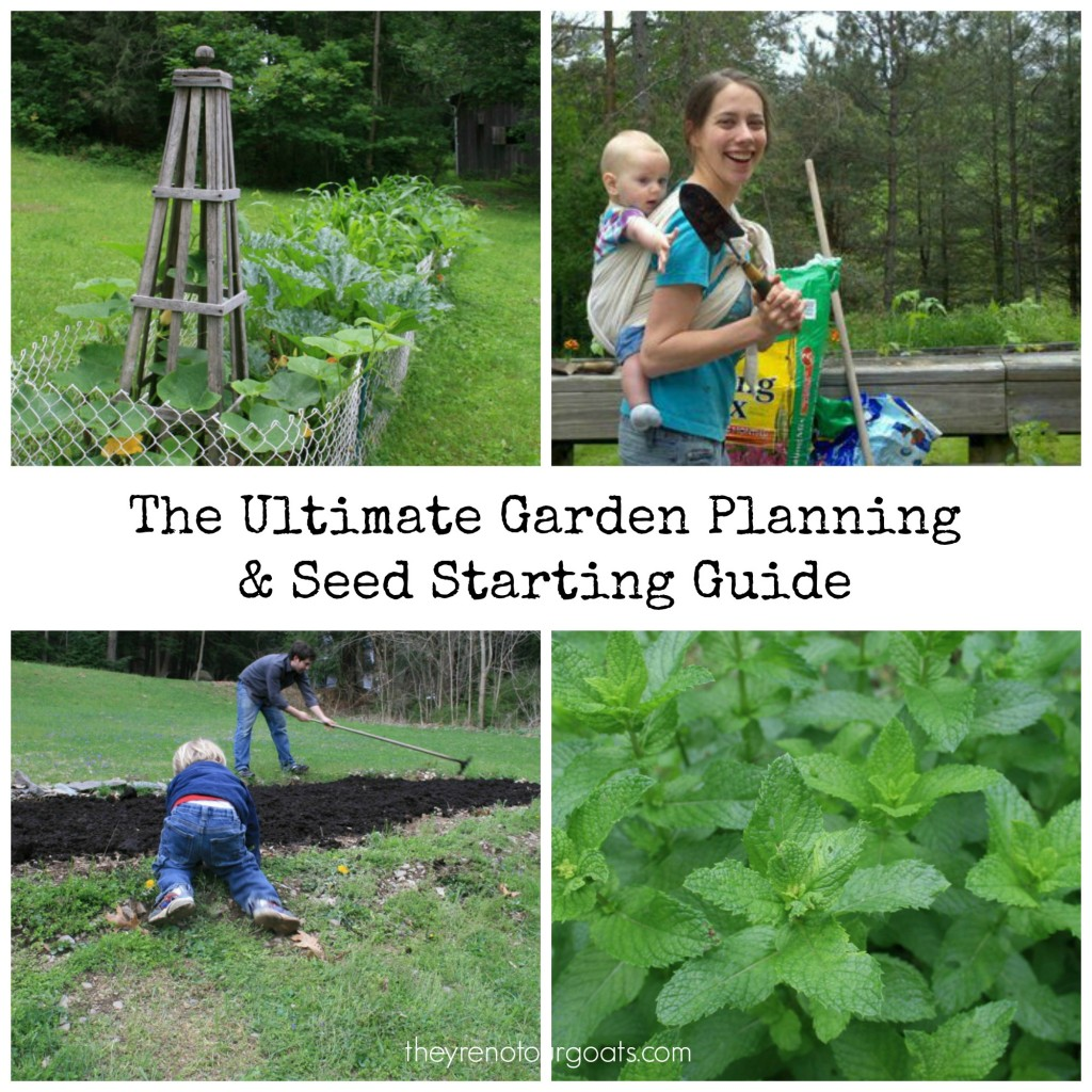 The ultimate resource guide to planning your garden this year!