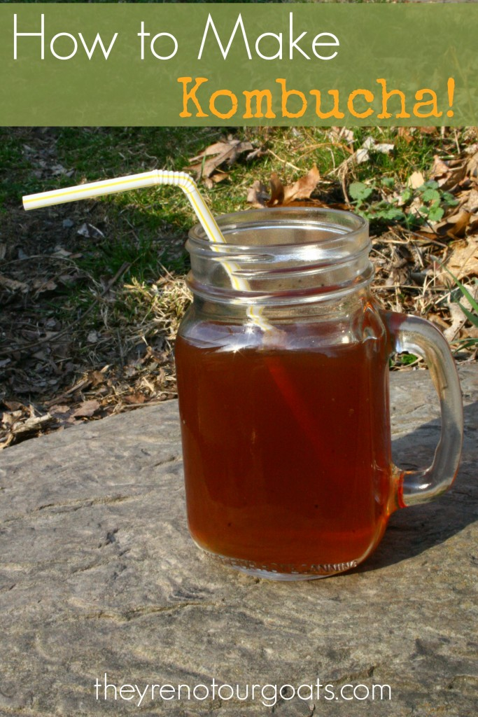 How to make kombucha, simply and frugally, in your own kitchen.