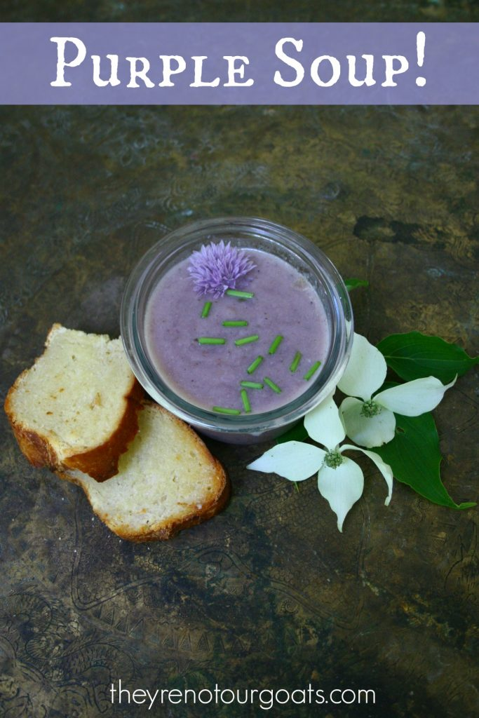Purple Soup