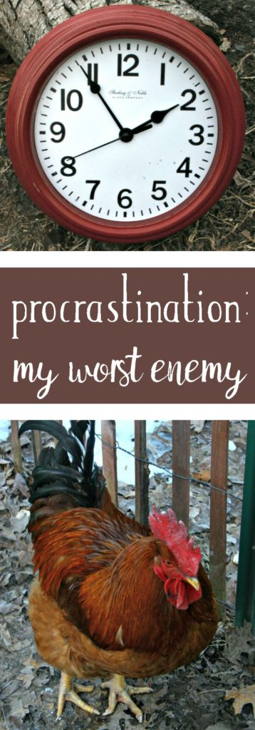 Why procrastination is one of my worst enemies on the homestead and what I'm doing to work against it.