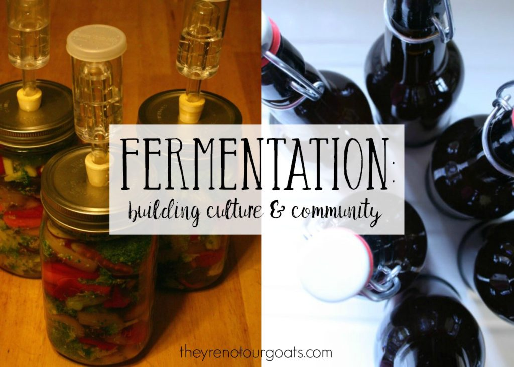How fermentation has played into culture and community for thousands of years.